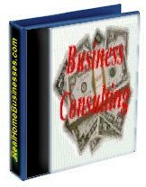 business consulting book