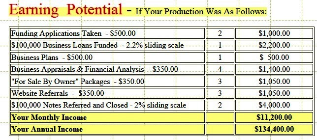 sample business consulting income